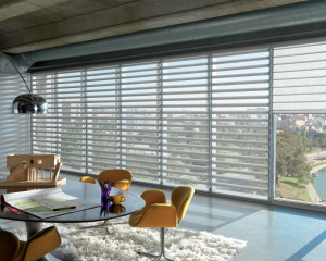 Hunter Douglas Pirouette® Shades