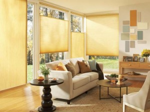 Duette® Honeycomb Shades in the Family Room